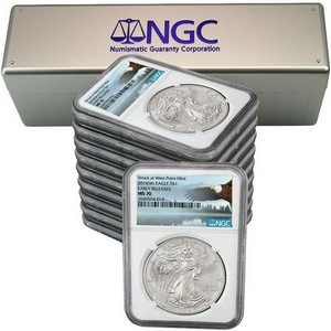 2015(W) Silver American Eagle Struck at WP MS70 ER NGC Bald Eagle Label 10pc