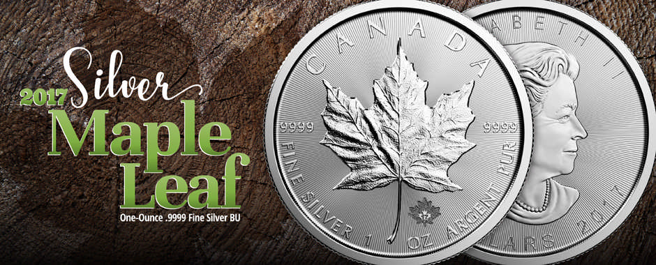2017 Canadian Silver Maples