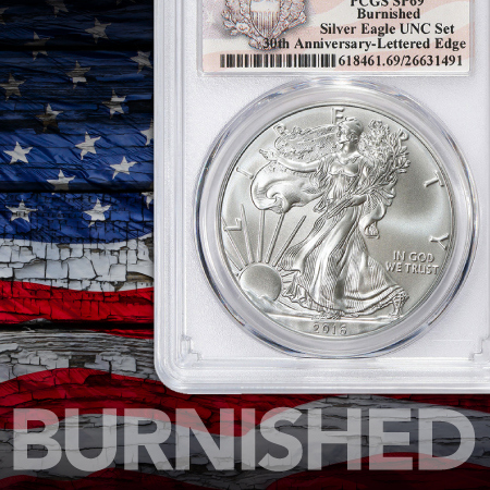 Burnished Silver American Eagles
